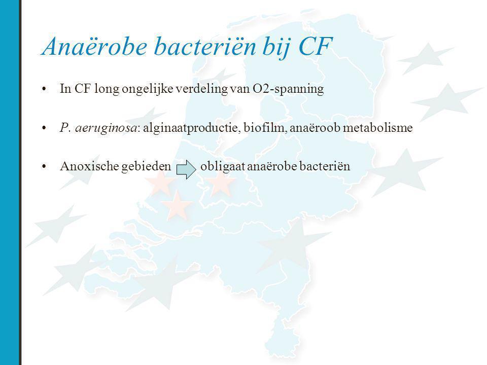 Anaërobe bacteriën bij CF In CF long ongelijke verdeling van O2-spanning P.