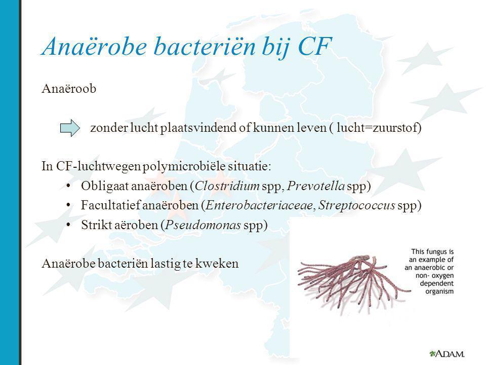Anaërobe bacteriën bij CF Anaëroob zonder lucht plaatsvindend of kunnen leven ( lucht=zuurstof) In CF-luchtwegen polymicrobiële situatie: Obligaat anaëroben (Clostridium spp, Prevotella spp) Facultatief anaëroben (Enterobacteriaceae, Streptococcus spp) Strikt aëroben (Pseudomonas spp) Anaërobe bacteriën lastig te kweken