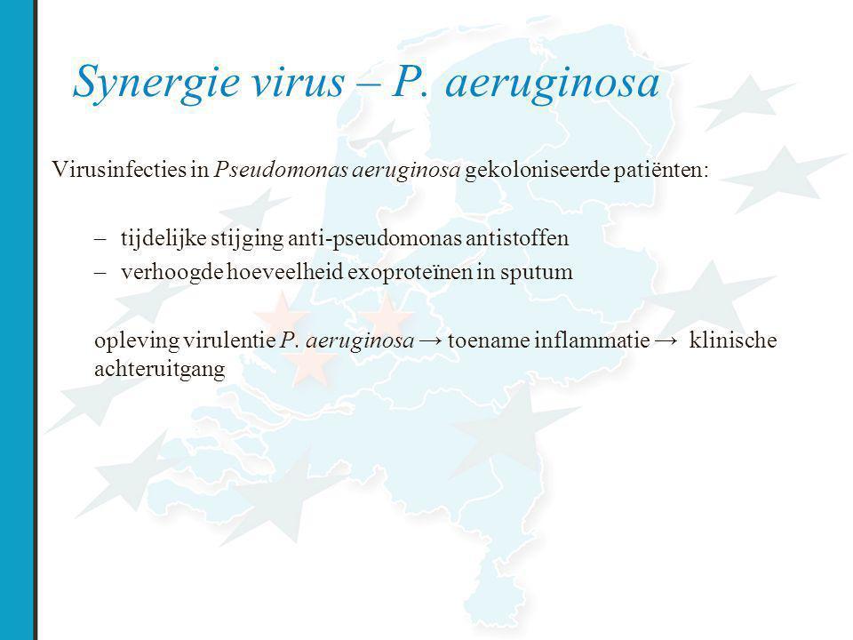 Synergie virus – P.