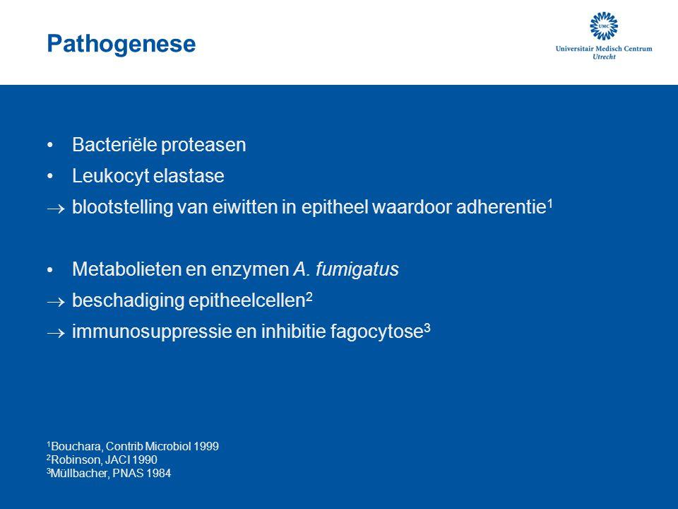 Pathogenese Bacteriële proteasen Leukocyt elastase  blootstelling van eiwitten in epitheel waardoor adherentie 1 Metabolieten en enzymen A. fumigatus