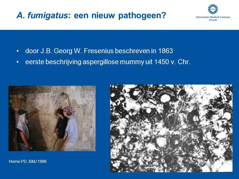 A. fumigatus: een nieuw pathogeen? door J.B. Georg W. Fresenius beschreven in 1863 eerste beschrijving aspergillose mummy uit 1450 v. Chr. Horne PD. B
