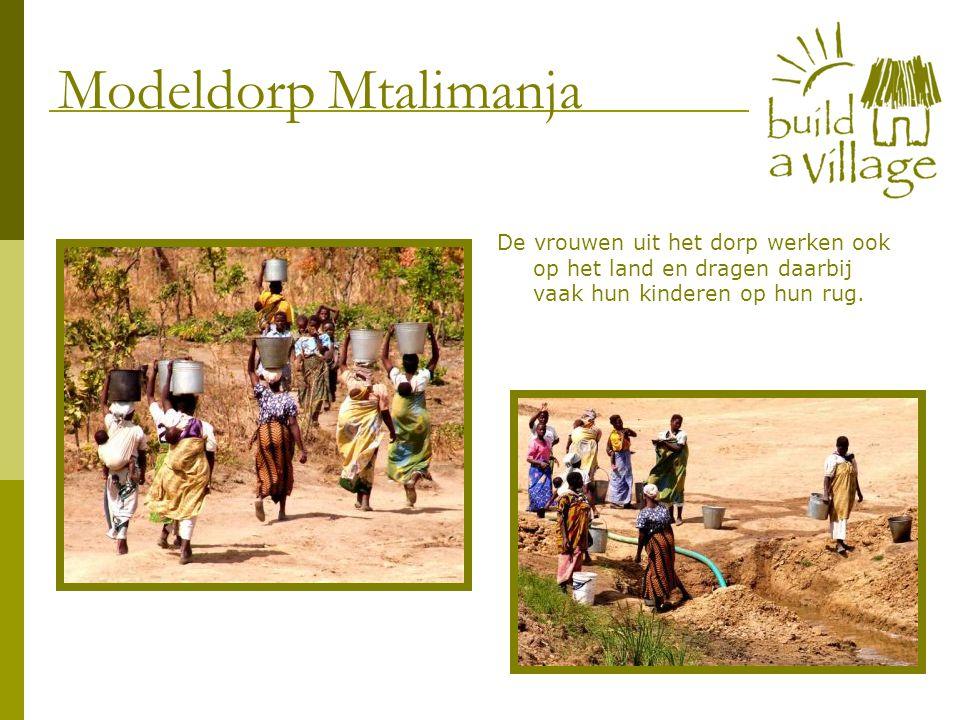 De vrouwen uit het dorp werken ook op het land en dragen daarbij vaak hun kinderen op hun rug. Modeldorp Mtalimanja