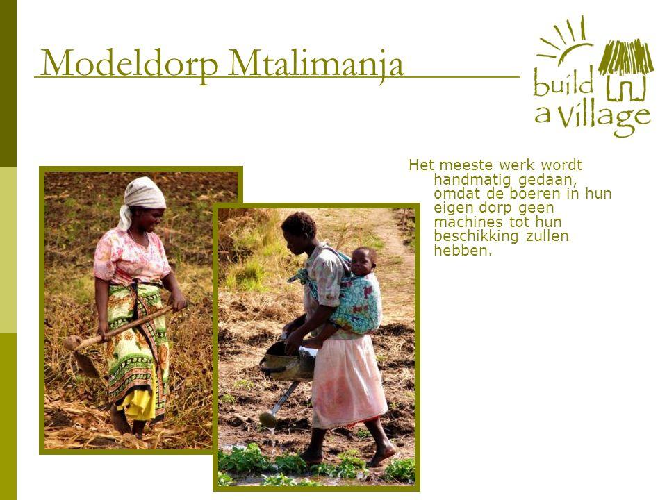Het meeste werk wordt handmatig gedaan, omdat de boeren in hun eigen dorp geen machines tot hun beschikking zullen hebben. Modeldorp Mtalimanja