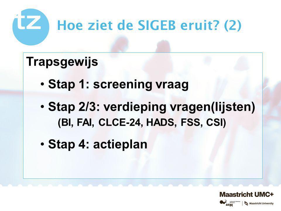 Hoe ziet de SIGEB eruit? (2) Trapsgewijs Stap 1: screening vraag Stap 2/3: verdieping vragen(lijsten) (BI, FAI, CLCE-24, HADS, FSS, CSI) Stap 4: actie