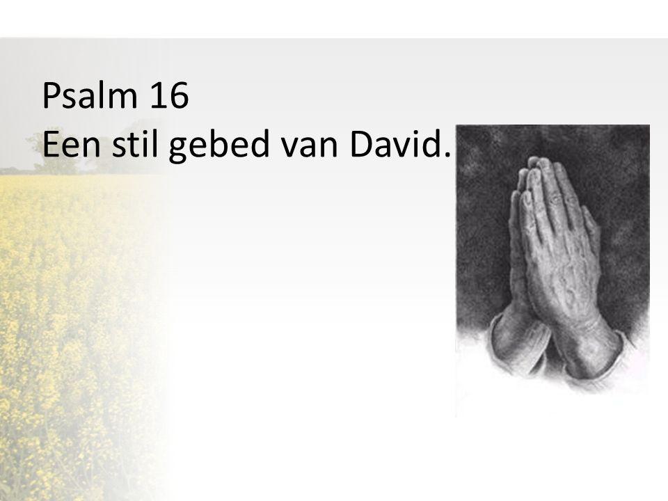 Psalm 16 Een stil gebed van David.