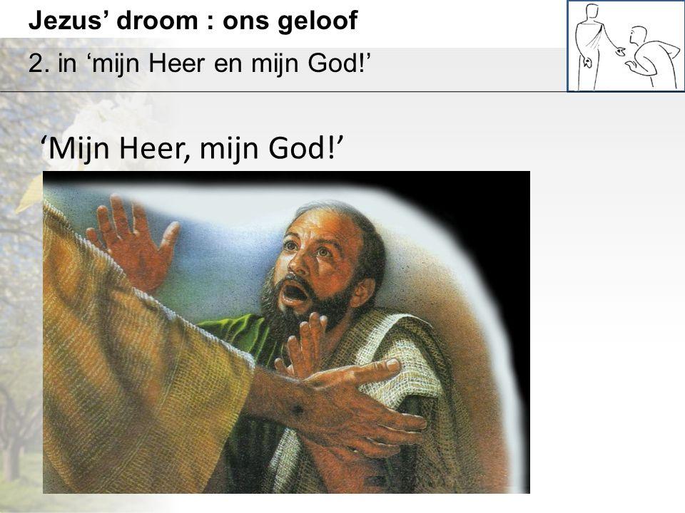 Jezus' droom : ons geloof 2. in 'mijn Heer en mijn God!' 'Mijn Heer, mijn God!'