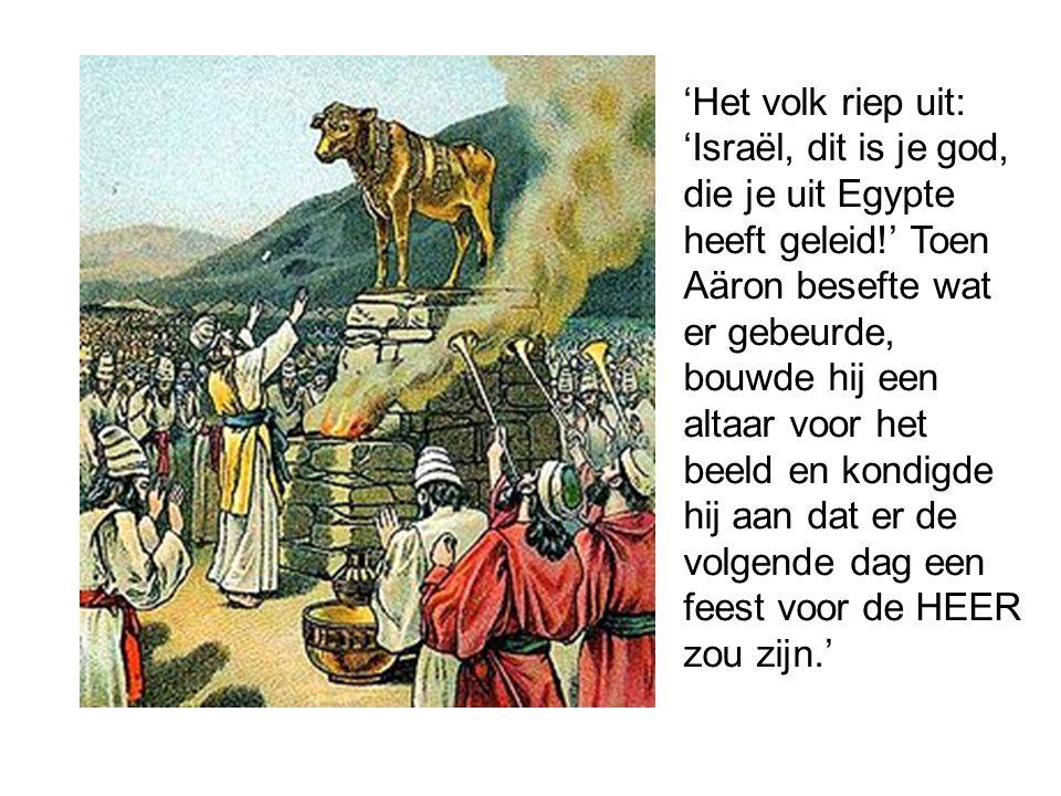 Maak geen godenbeelden, … Kniel voor zulke beelden niet neer, vereer ze niet, want ik, de HEER, uw God, duld geen andere goden naast mij.