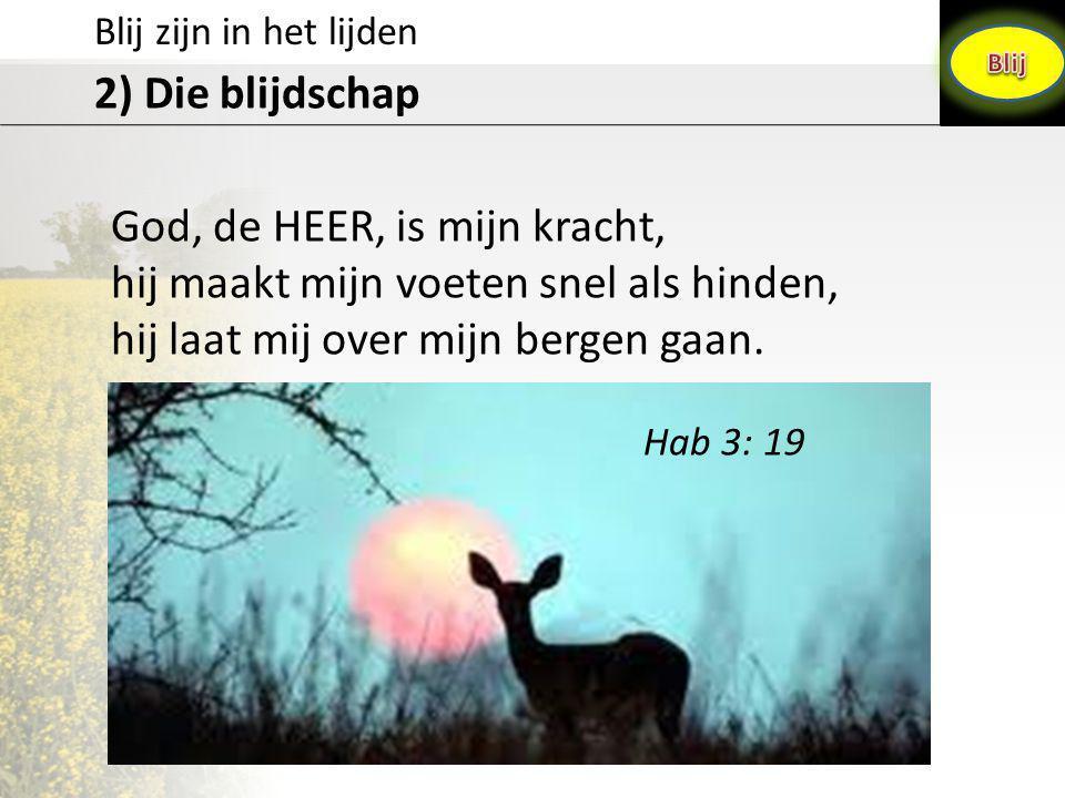 Blij zijn in het lijden 2) Die blijdschap God, de HEER, is mijn kracht, hij maakt mijn voeten snel als hinden, hij laat mij over mijn bergen gaan. Hab