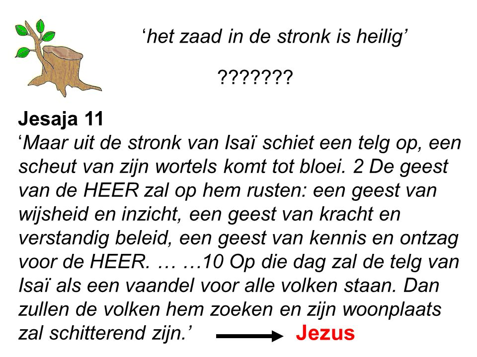 'het zaad in de stronk is heilig' Jesaja 11 'Maar uit de stronk van Isaï schiet een telg op, een scheut van zijn wortels komt tot bloei.