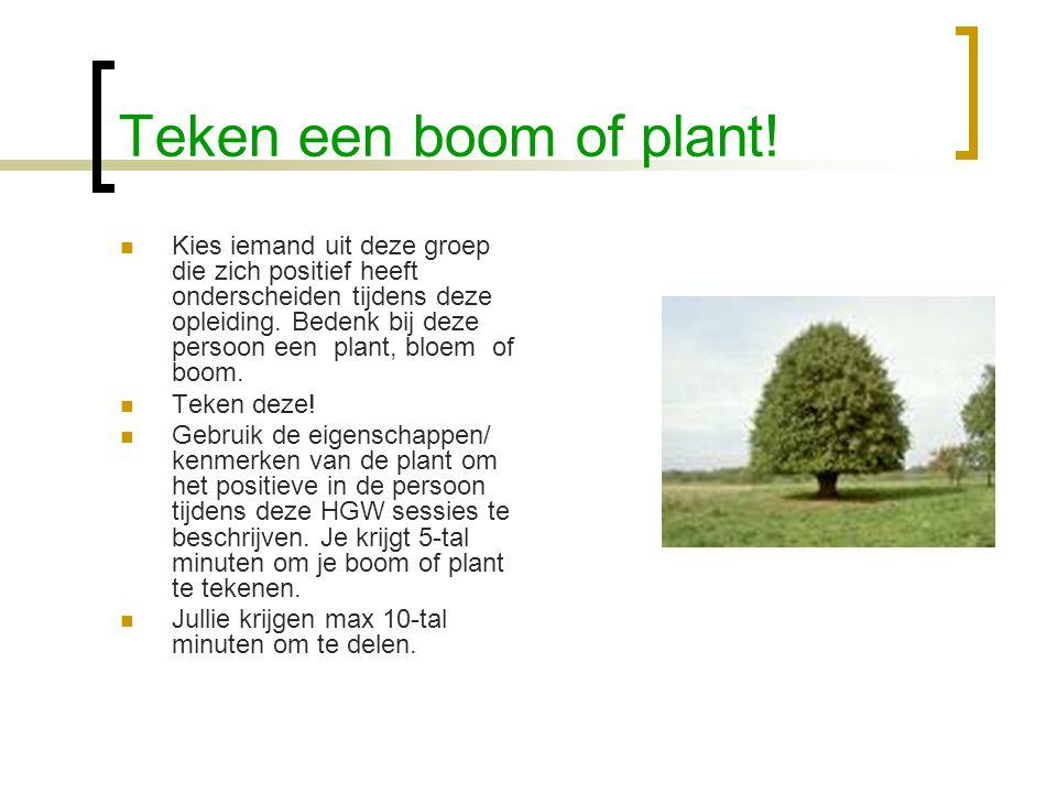 Teken een boom of plant.
