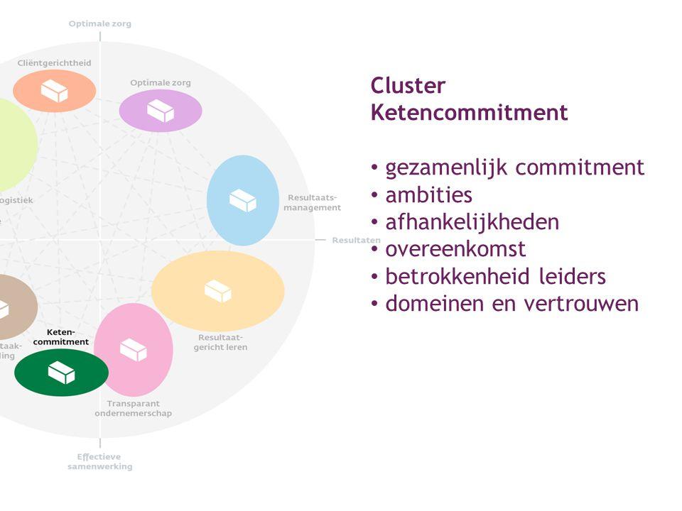 Cluster Ketencommitment gezamenlijk commitment ambities afhankelijkheden overeenkomst betrokkenheid leiders domeinen en vertrouwen