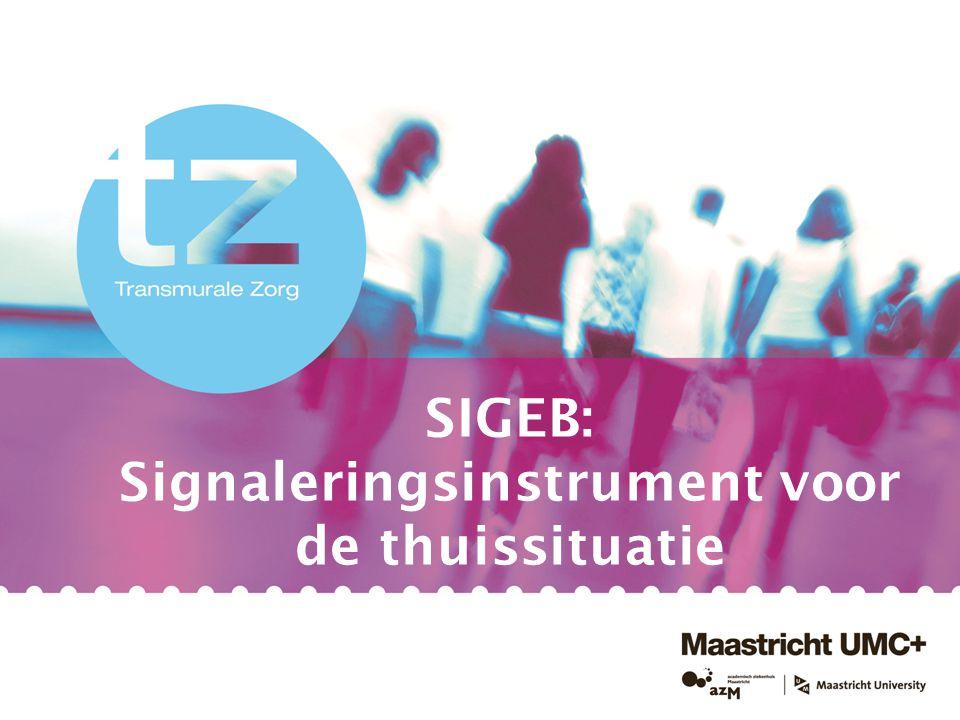 SIGEB: Signaleringsinstrument voor de thuissituatie