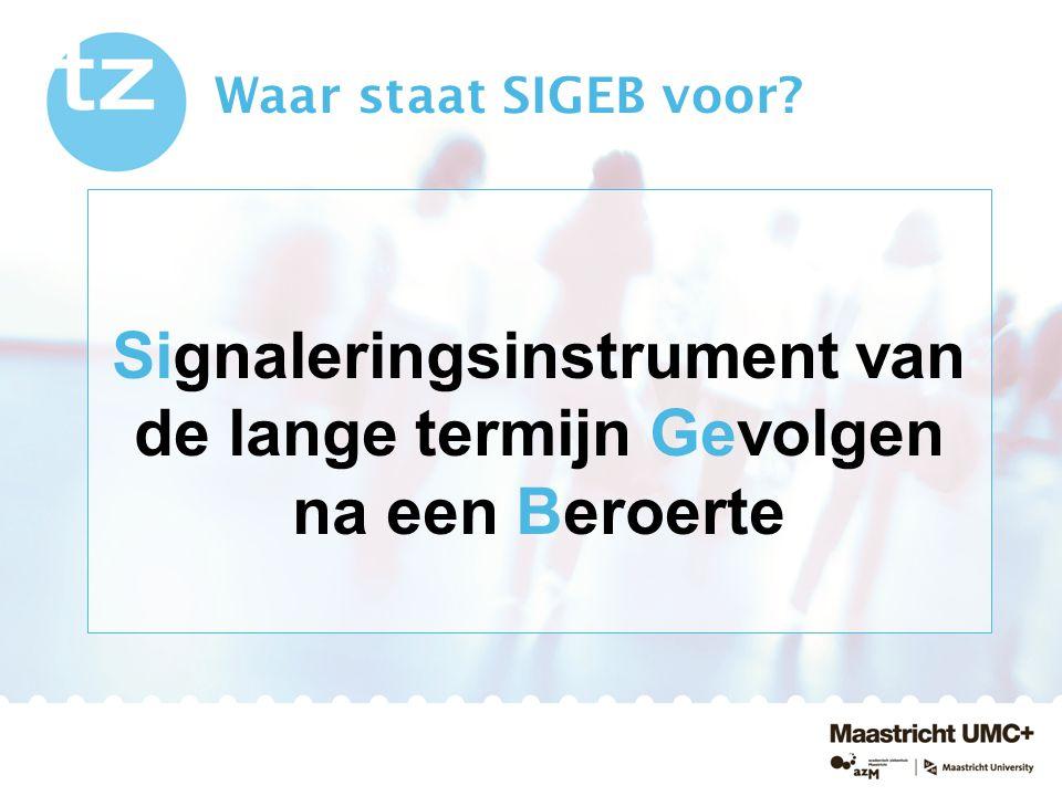Signaleringsinstrument van de lange termijn Gevolgen na een Beroerte Waar staat SIGEB voor?