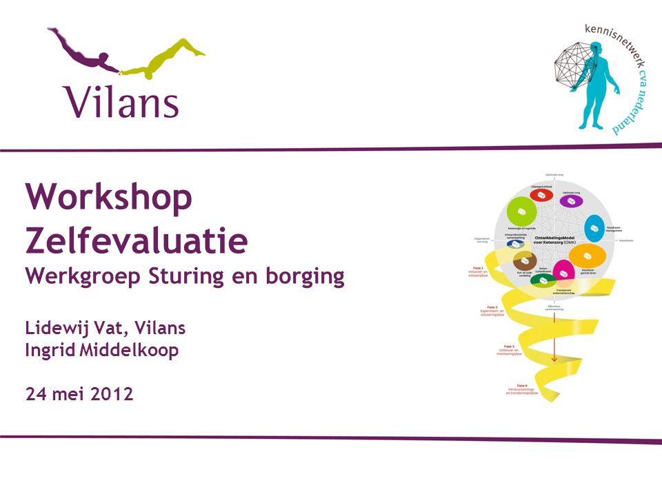 Workshop Zelfevaluatie Werkgroep Sturing en borging Lidewij Vat, Vilans Ingrid Middelkoop 24 mei 2012