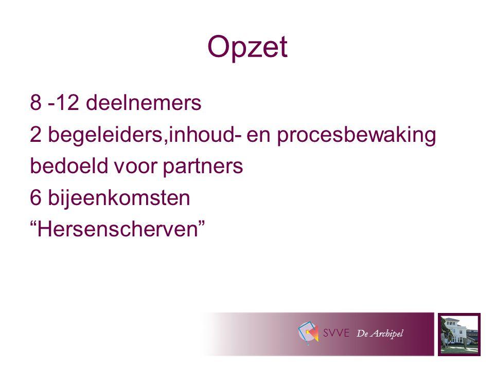 SVVE De Archipel Opzet 8 -12 deelnemers 2 begeleiders,inhoud- en procesbewaking bedoeld voor partners 6 bijeenkomsten Hersenscherven