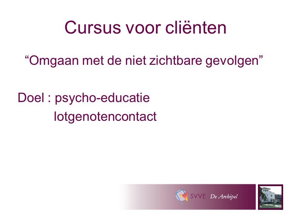 SVVE De Archipel Cursus voor cliënten Omgaan met de niet zichtbare gevolgen Doel : psycho-educatie lotgenotencontact