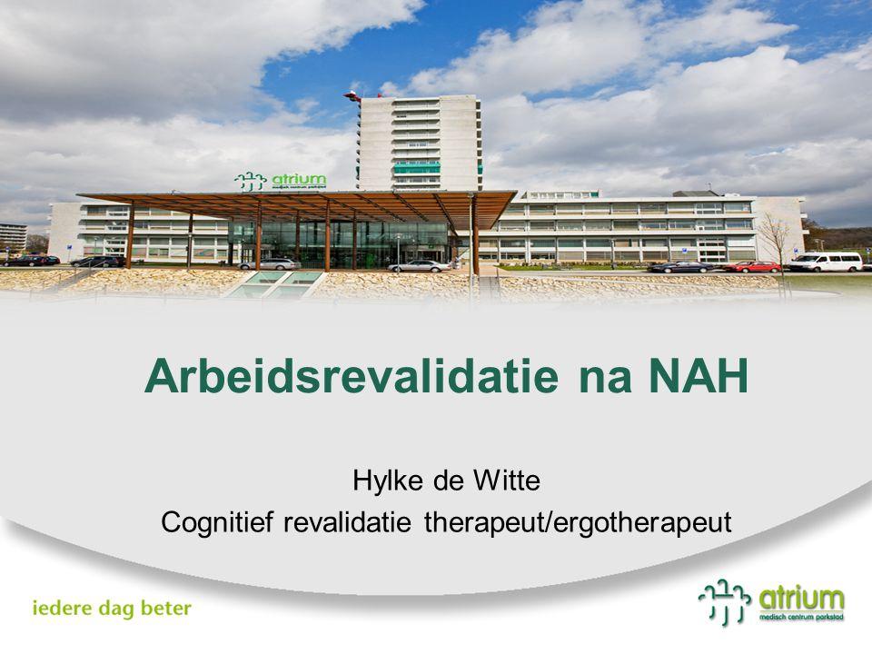 Arbeidsrevalidatie na NAH Hylke de Witte Cognitief revalidatie therapeut/ergotherapeut