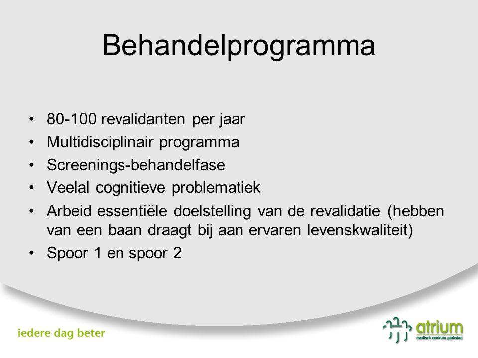 Behandelprogramma 80-100 revalidanten per jaar Multidisciplinair programma Screenings-behandelfase Veelal cognitieve problematiek Arbeid essentiële do
