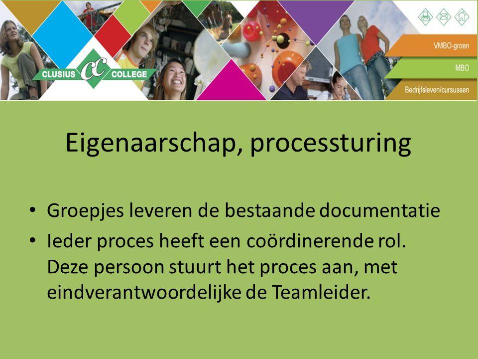 Eigenaarschap, processturing Groepjes leveren de bestaande documentatie Ieder proces heeft een coördinerende rol. Deze persoon stuurt het proces aan,