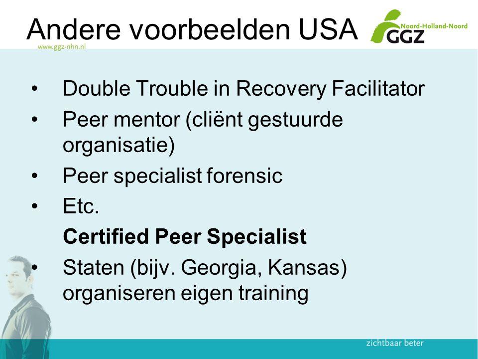 Andere voorbeelden USA Double Trouble in Recovery Facilitator Peer mentor (cliënt gestuurde organisatie) Peer specialist forensic Etc. Certified Peer