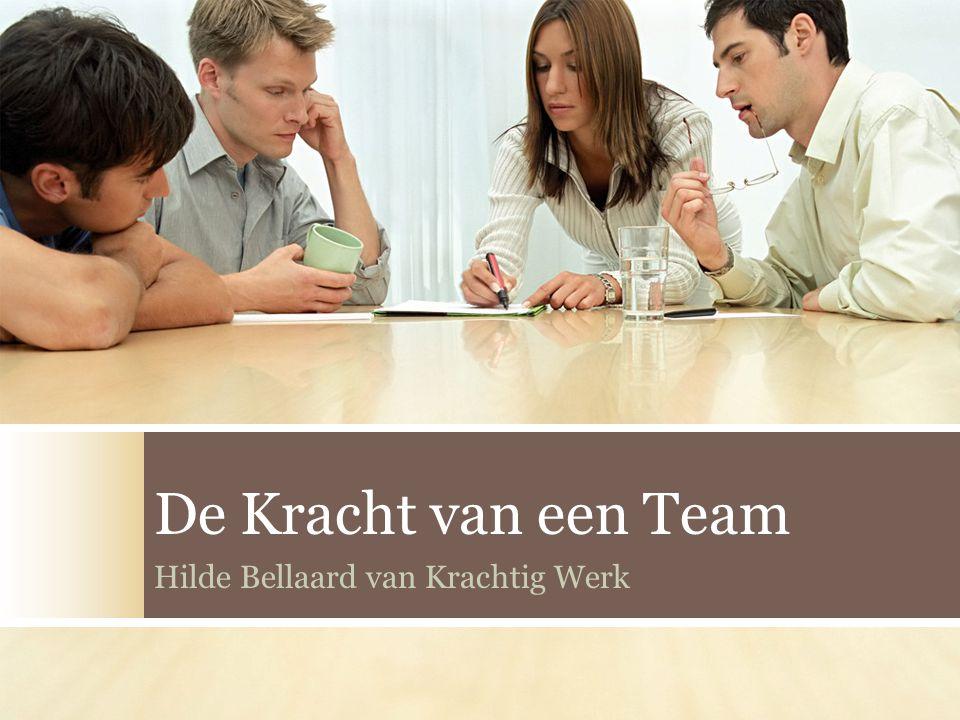 De Kracht van een Team Hilde Bellaard van Krachtig Werk
