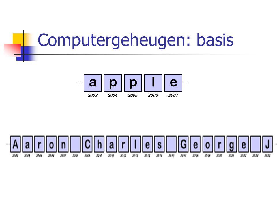 Computergeheugen: basis