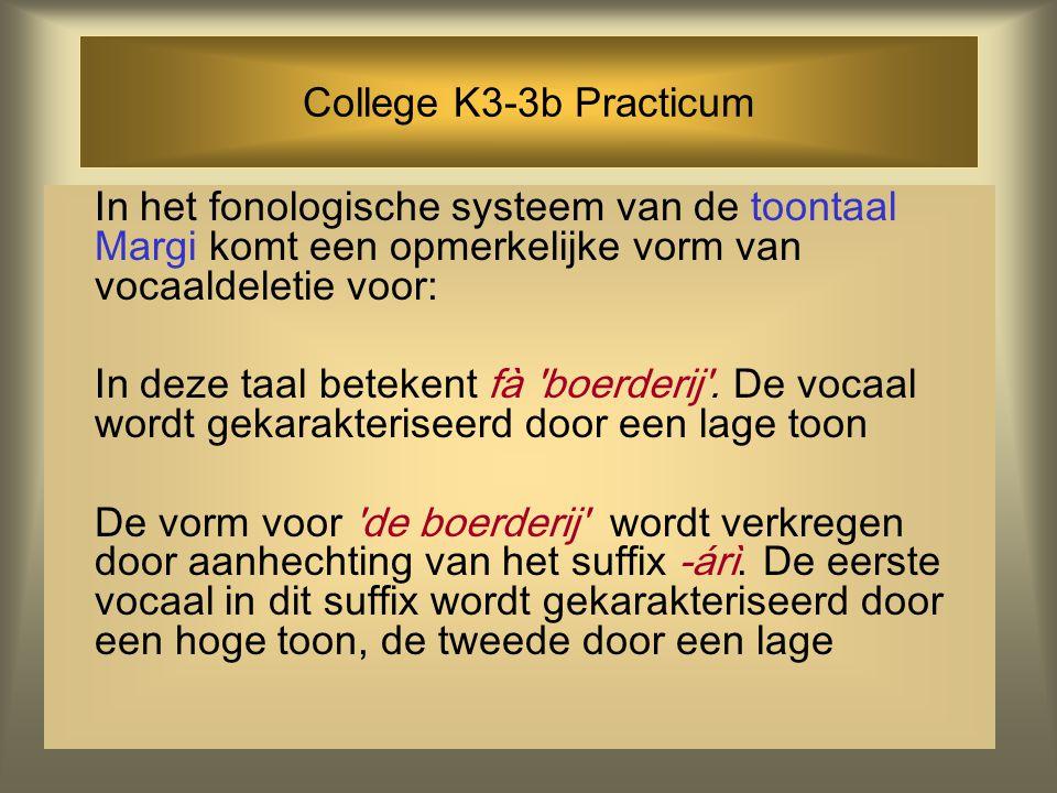 College K3-3b Practicum In het fonologische systeem van de toontaal Margi komt een opmerkelijke vorm van vocaaldeletie voor: In deze taal betekent fà boerderij .