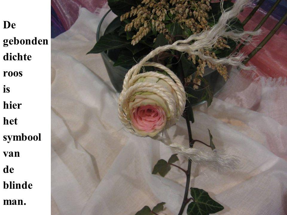 De open roos is het symbool van de man die ziende wordt.