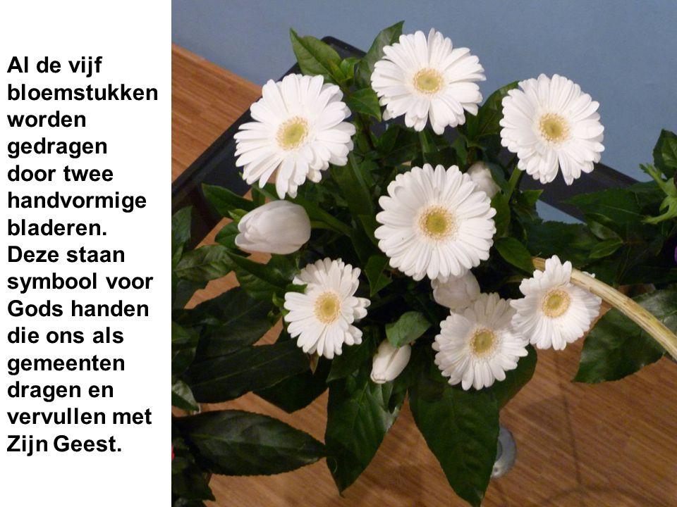 Al de vijf bloemstukken worden gedragen door twee handvormige bladeren.