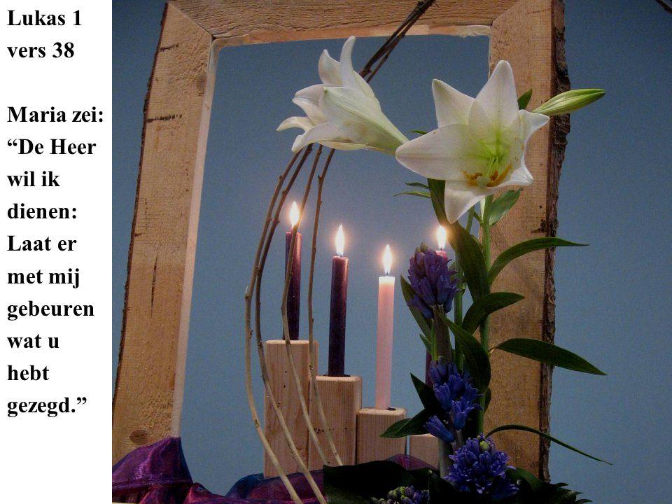 Lukas 1 vers 38 Maria zei: De Heer wil ik dienen: Laat er met mij gebeuren wat u hebt gezegd.