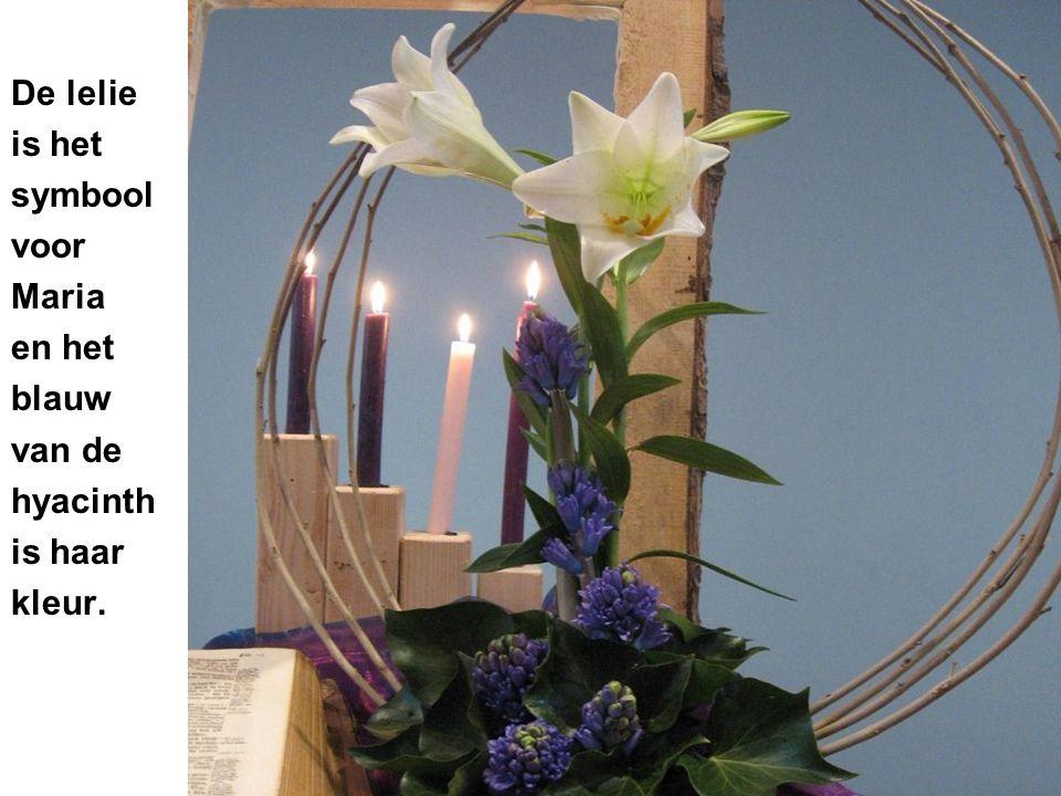 De lelie is het symbool voor Maria en het blauw van de hyacinth is haar kleur.