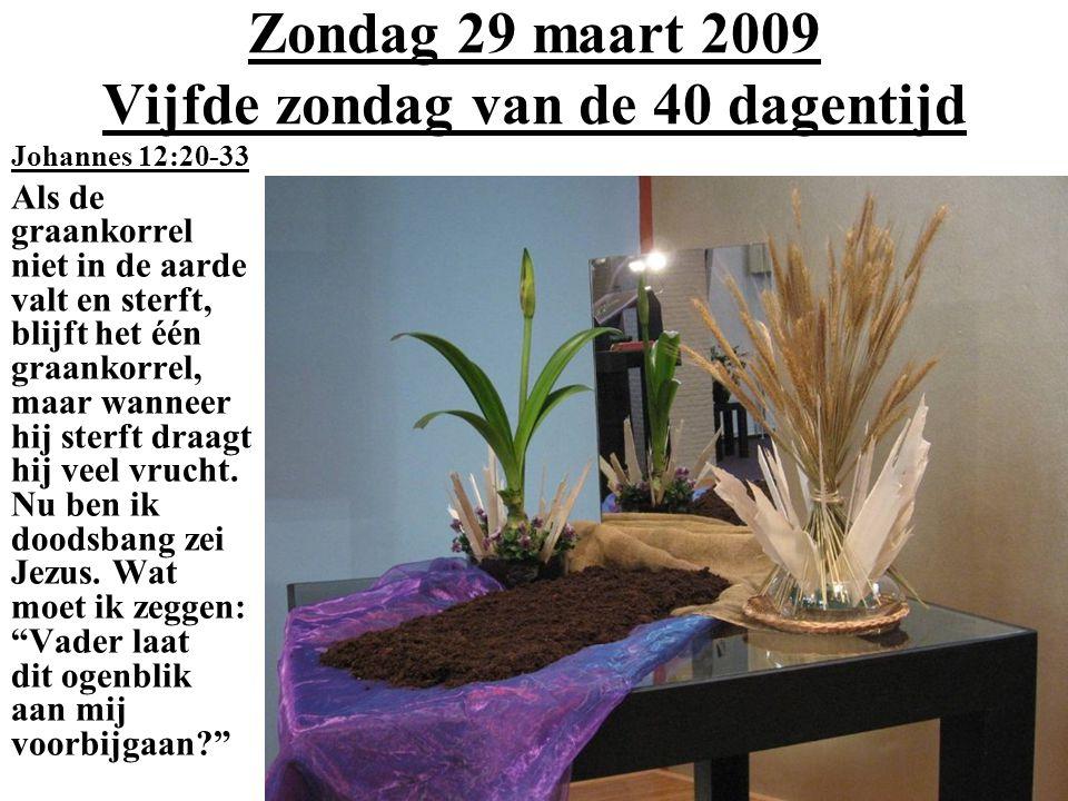 Zondag 29 maart 2009 Vijfde zondag van de 40 dagentijd Johannes 12:20-33 Als de graankorrel niet in de aarde valt en sterft, blijft het één graankorrel, maar wanneer hij sterft draagt hij veel vrucht.