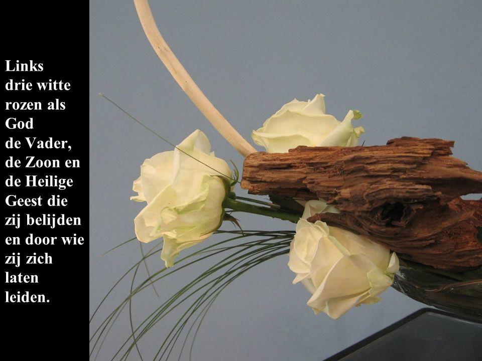 Links drie witte rozen als God de Vader, de Zoon en de Heilige Geest die zij belijden en door wie zij zich laten leiden.