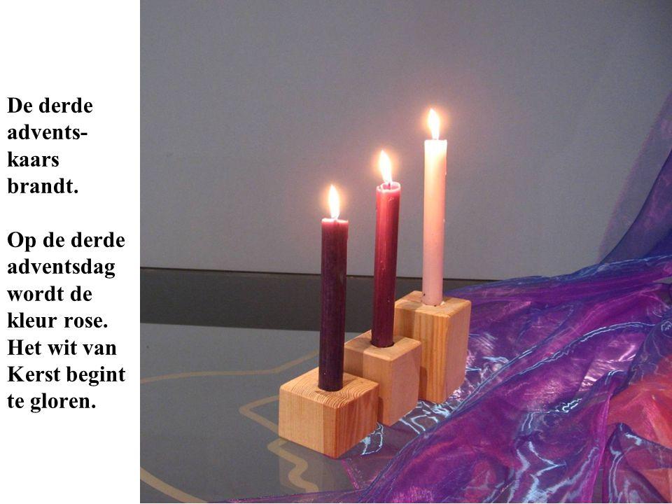 De derde advents- kaars brandt. Op de derde adventsdag wordt de kleur rose. Het wit van Kerst begint te gloren.