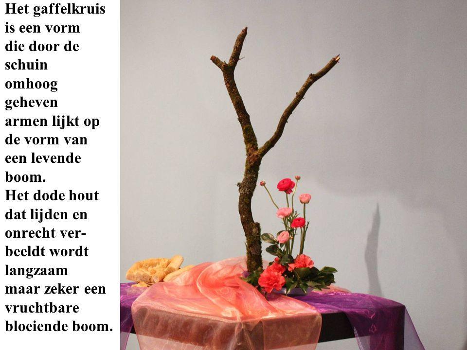 Het gaffelkruis is een vorm die door de schuin omhoog geheven armen lijkt op de vorm van een levende boom. Het dode hout dat lijden en onrecht ver- be