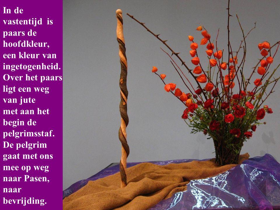 In de vastentijd is paars de hoofdkleur, een kleur van ingetogenheid.