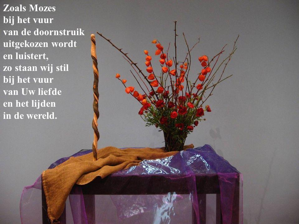Zoals Mozes bij het vuur van de doornstruik uitgekozen wordt en luistert, zo staan wij stil bij het vuur van Uw liefde en het lijden in de wereld.