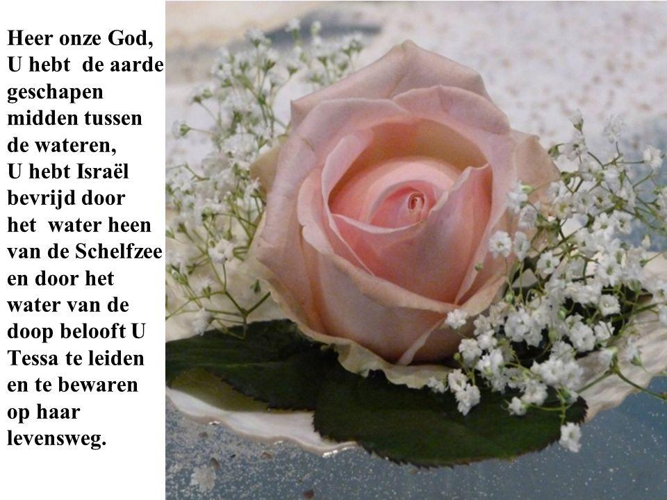 Heer onze God, U hebt de aarde geschapen midden tussen de wateren, U hebt Israël bevrijd door het water heen van de Schelfzee en door het water van de doop belooft U Tessa te leiden en te bewaren op haar levensweg.