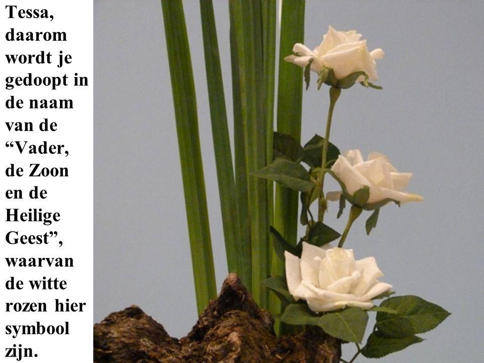 Tessa, daarom wordt je gedoopt in de naam van de Vader, de Zoon en de Heilige Geest , waarvan de witte rozen hier symbool zijn.