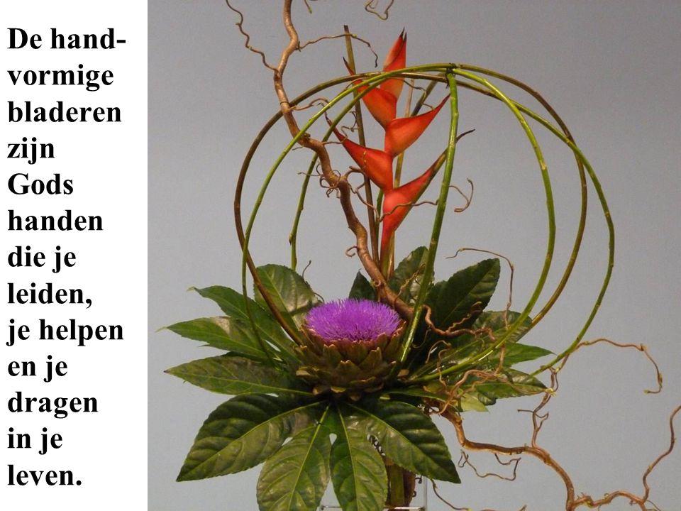 De hand- vormige bladeren zijn Gods handen die je leiden, je helpen en je dragen in je leven.