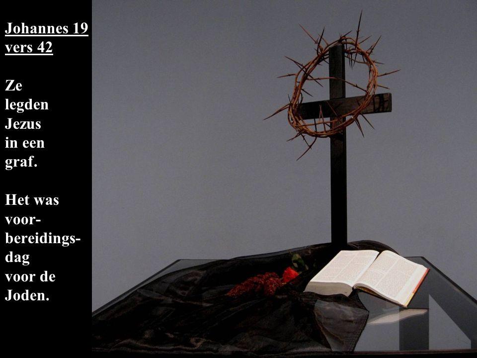 eeneen Johannes 19 vers 42 Ze legden Jezus in een graf.
