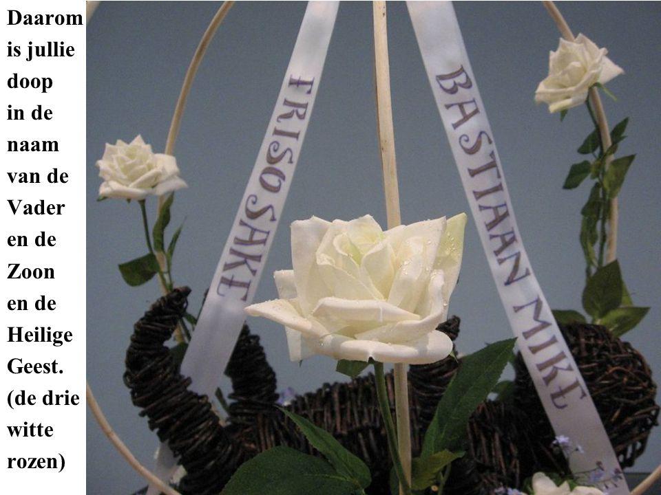 Daarom is jullie doop in de naam van de Vader en de Zoon en de Heilige Geest. (de drie witte rozen)
