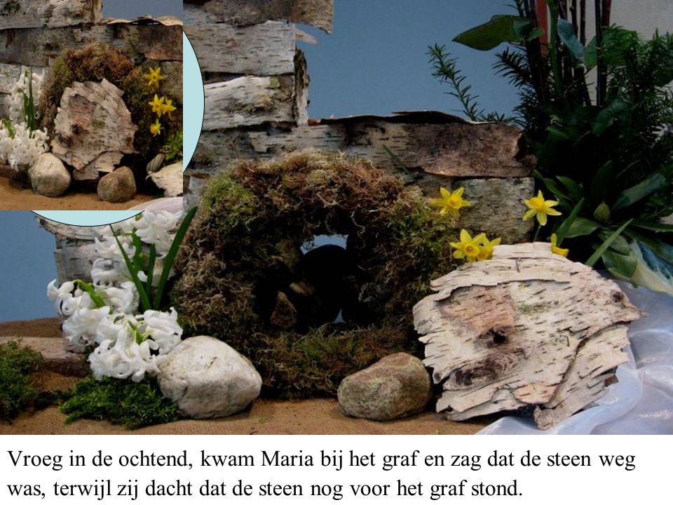 Vroeg in de ochtend, kwam Maria bij het graf en zag dat de steen weg was, terwijl zij dacht dat de steen nog voor het graf stond.