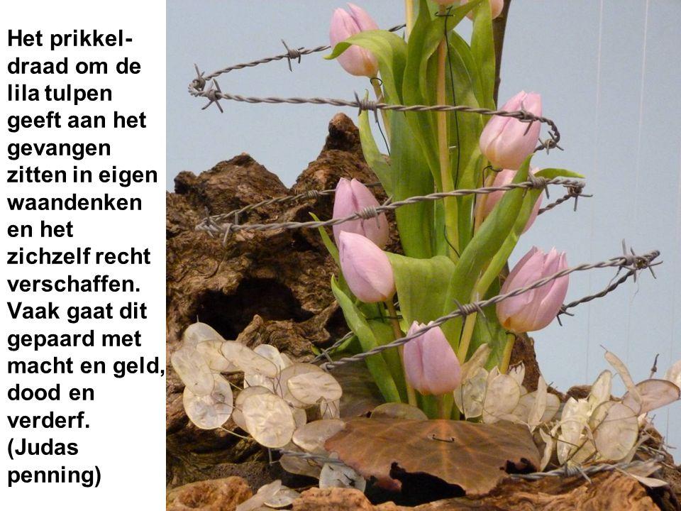 Het prikkel- draad om de lila tulpen geeft aan het gevangen zitten in eigen waandenken en het zichzelf recht verschaffen.