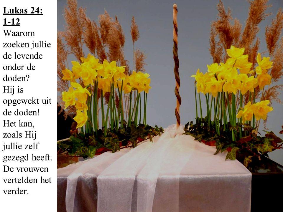 Lukas 24: 1-12 Waarom zoeken jullie de levende onder de doden? Hij is opgewekt uit de doden! Het kan, zoals Hij jullie zelf gezegd heeft. De vrouwen v