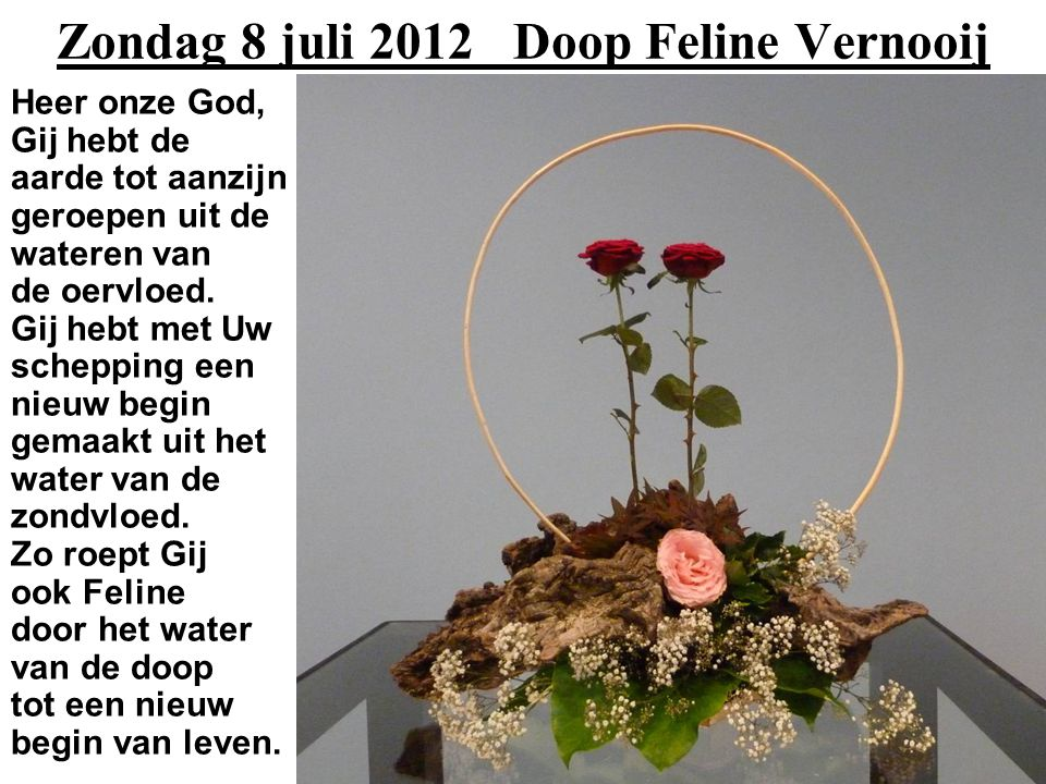 Zondag 8 juli 2012 Doop Feline Vernooij Heer onze God, Gij hebt de aarde tot aanzijn geroepen uit de wateren van de oervloed.