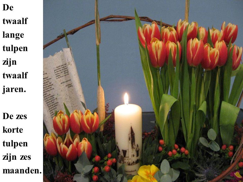De twaalf lange tulpen zijn twaalf jaren. De zes korte tulpen zijn zes maanden.