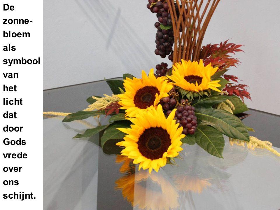 De zonne- bloem als symbool van het licht dat door Gods vrede over ons schijnt.