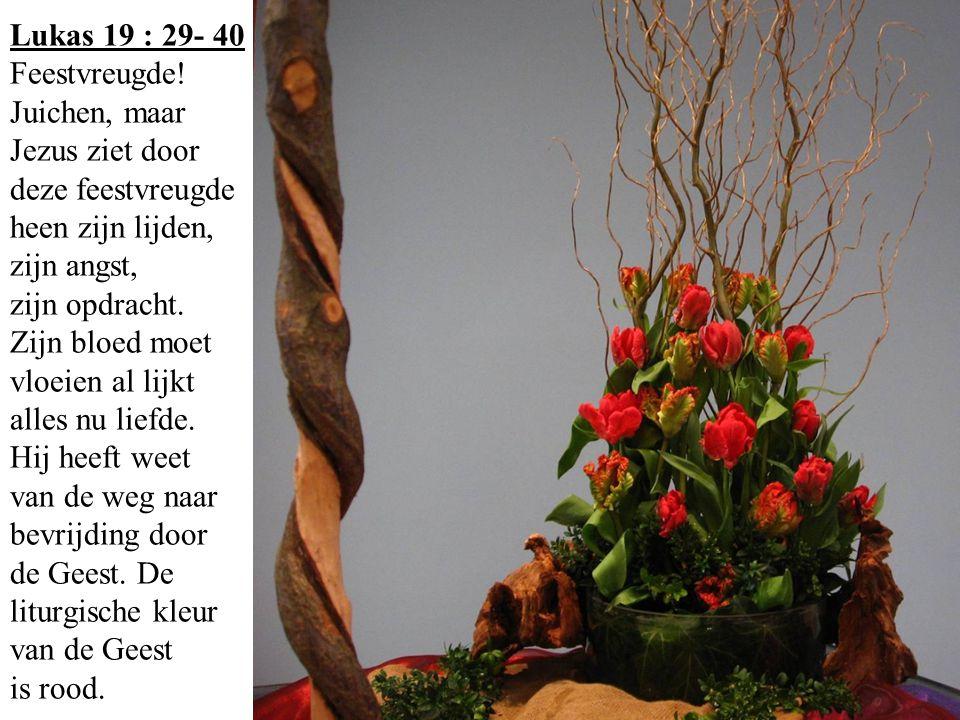 Lukas 19 : 29- 40 Feestvreugde! Juichen, maar Jezus ziet door deze feestvreugde heen zijn lijden, zijn angst, zijn opdracht. Zijn bloed moet vloeien a