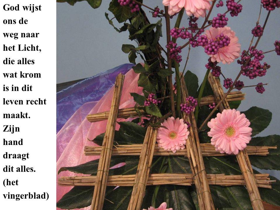 De paarse callicarpa en de roze gerbera geven in hun kleur Gods trouw en belofte weer met uitzicht op het Licht van Betlehem.